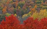 October 21-22, 2010 Photo Shoot