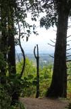 Monte de la Cruz Jardin