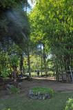 Lankester Gardens