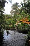 Tabacon Hot Springs - Arenal Vocano