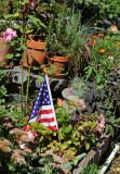 Garden Plot View