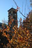 Judson Church Bell Tower & Cherry Foliage