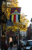 Tibetan Gift Shop & Saint Patrick's Churchyard