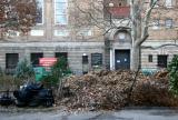 Compost Stash & Judson Church