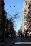 West View from Bleecker Street