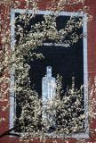 Pear Blossoms & Vodka Billboard