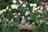 Peter Rabbit & Baby Rabbit in a Spring Flower Garden