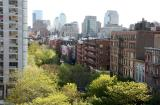Downtown Manhattan & New Foliage