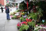 Neighborhood Florist