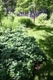 Ground Cover & Toddlers' Playground
