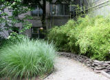 Bamboo and Other Grass Garden