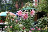 Garden View - Lilies