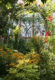 August 2006 Gardens