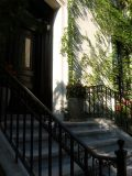 Residence Stoop with Woodbine Wall & Long Shadows