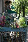 Sidewalk Gardens