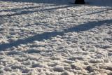 Snow & Shadows
