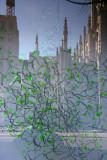 'Growing Green Things' - NYU Gallery Windows