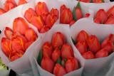 Farmers Market - Tulips
