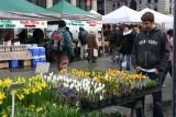 Farmers Market - Spring Flowers