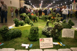 Flower Show - Topiary Dog Show
