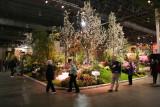 Flower Show - Garden