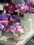 Sweet Pea and Anenome Flowers - Flower Market