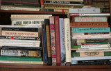 A Bookshelve - My Apartment