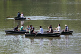 Rowing on the Lake