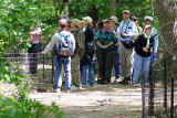 Bird Watchers near the Azalea Pond in the Rambles
