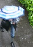 A Dash in the Rain