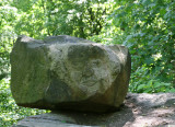 A Man's Stone Head - Central Park North Woods