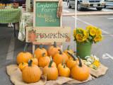 Farmers Market - September 12, 2010