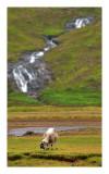 Sligachan,Isle of Skye