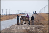 Donkey cart near Delareyville
