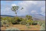 Skilpad Reserve