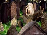 Old Jewish Cementery, Prague, Czech Republic