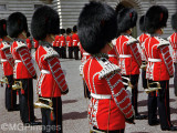 Royal Guard, London, United Kingdom