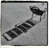 pigeon, chair and shadow