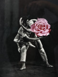 dancing with a rose...SP ;)
