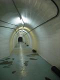 Tito's nuclear bunker, Bosnia-Herzegovina 2009