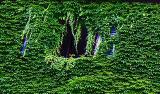 rome54_06.jpg