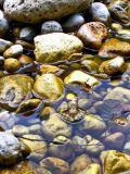 Neretva river, Bosnia Herzegovina