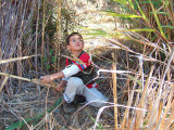 MarkCutting Reeds.jpg