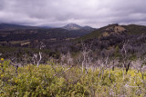 27 Climb After Sweetwater View Towards Cuyamaca.jpg