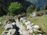 087 Climbing to Col di Lazoney.jpg