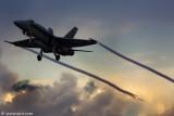 Spanish Air Force F_A-18 Hornet