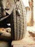 Sliced tyre - P1280102-1024.jpg