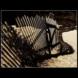 ... Fence and shadow !!!