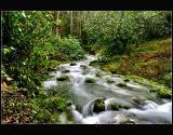 03.11.2005... Borning river...