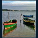 barcos 1.jpg